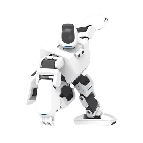 Robot Educativo Aelos Lite