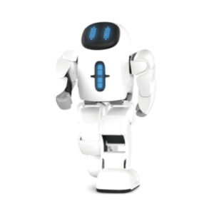 Pando Robot